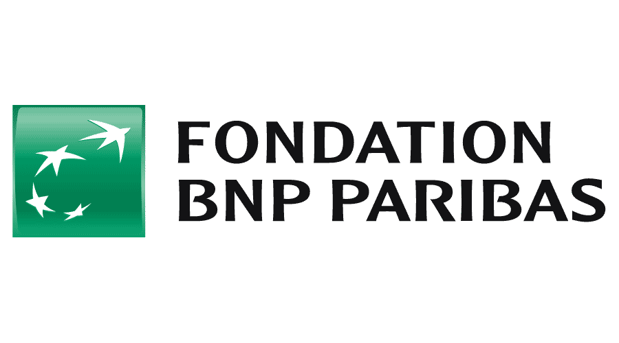 Fondation BNP Paribas Logo Vector
